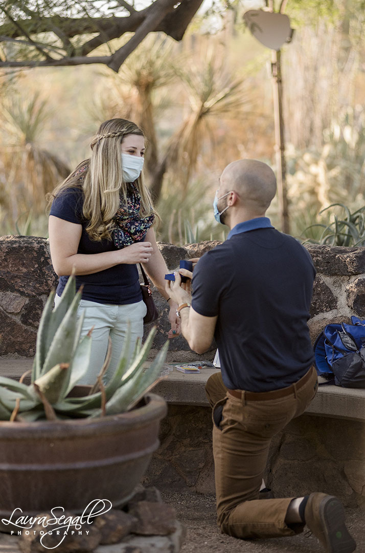 Desert Botanical Garden marriage proposal
