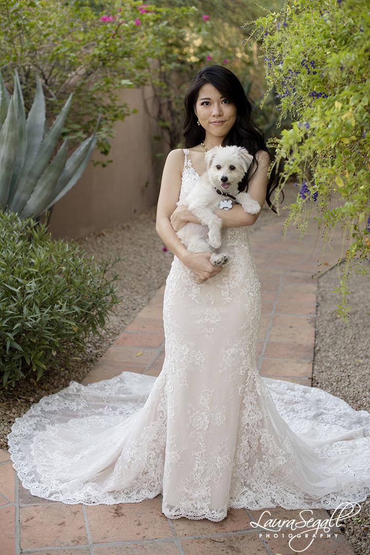 bride and puppy dog
