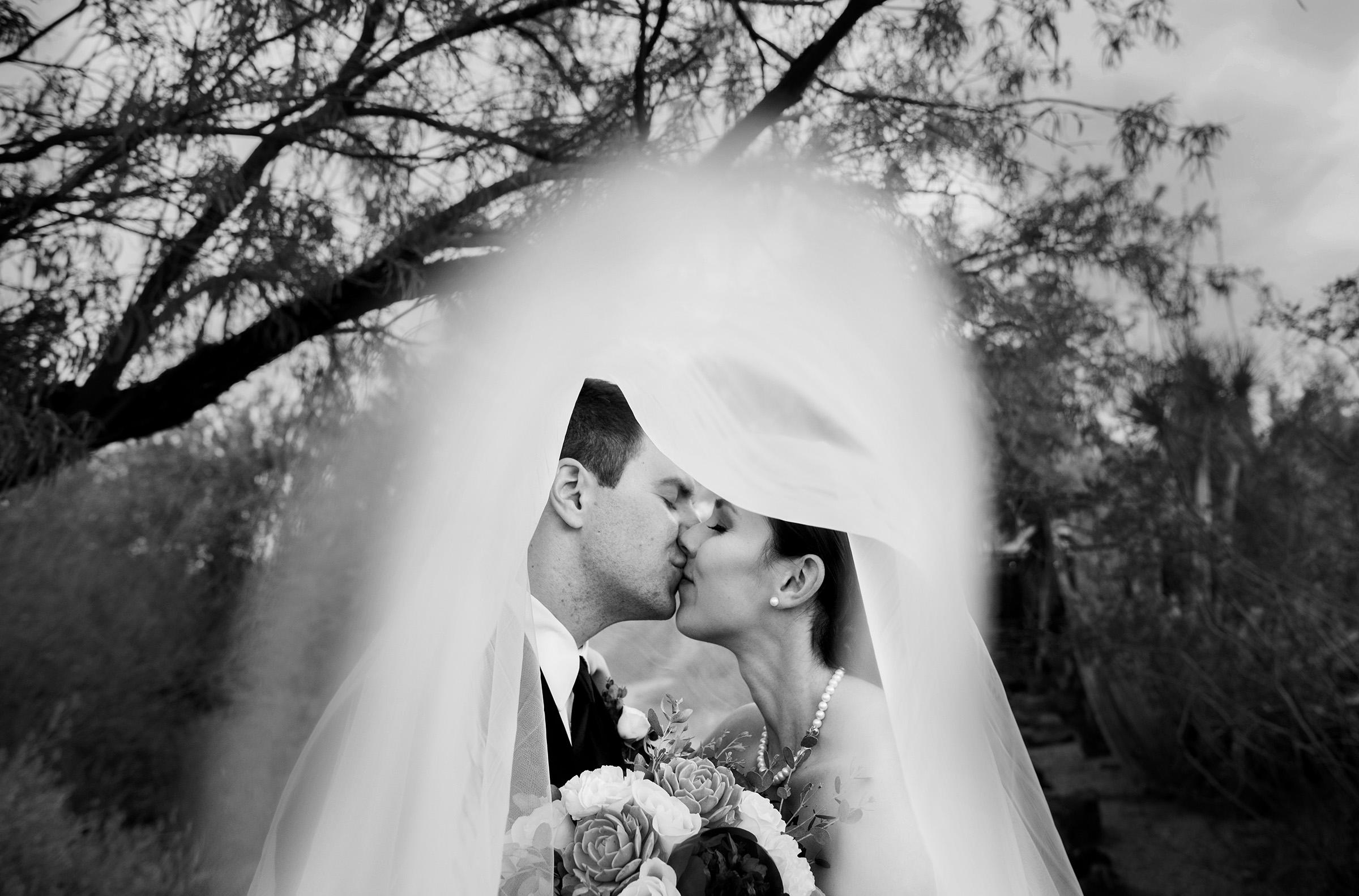 under the bridal veil