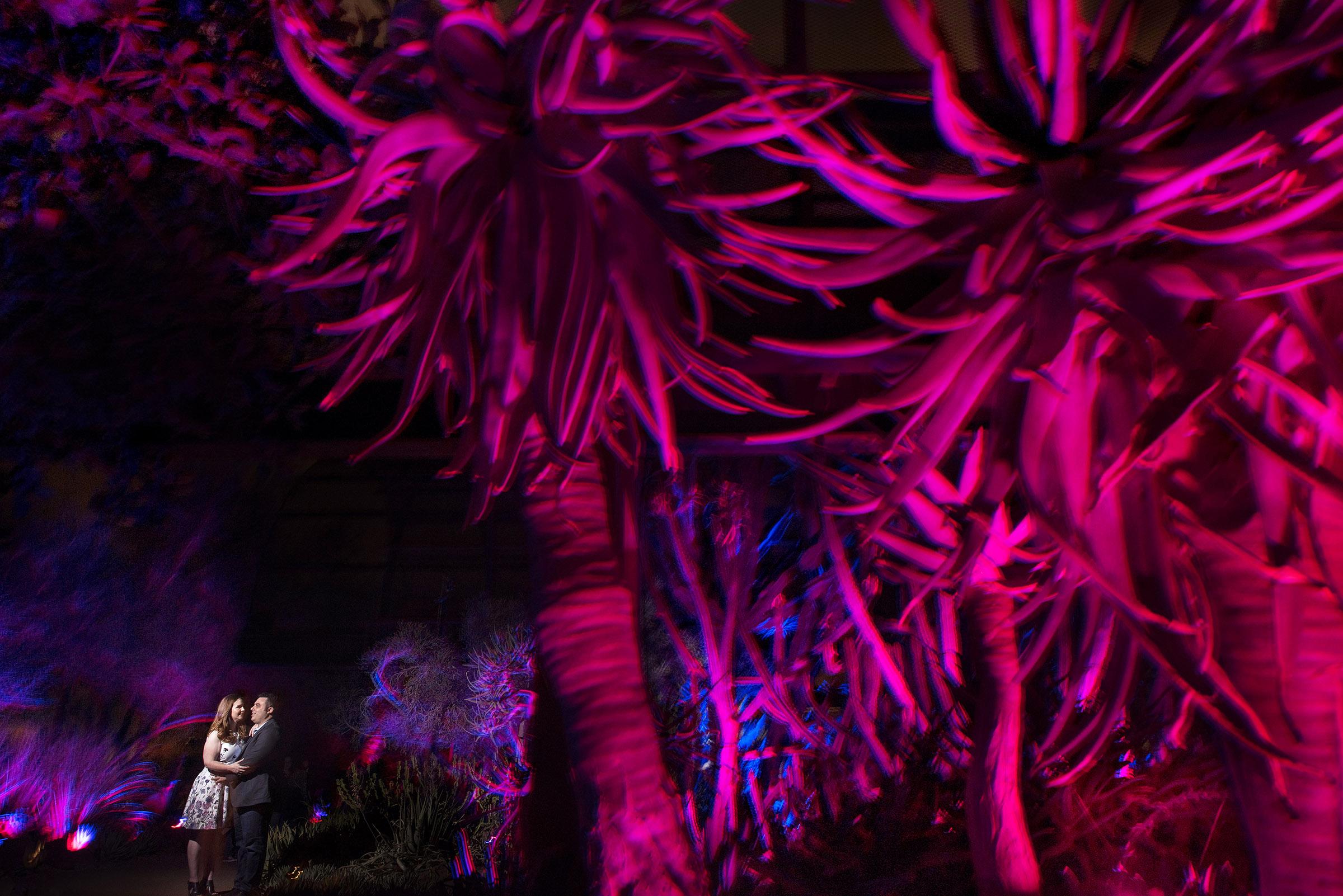 Desert Botanical Garden art