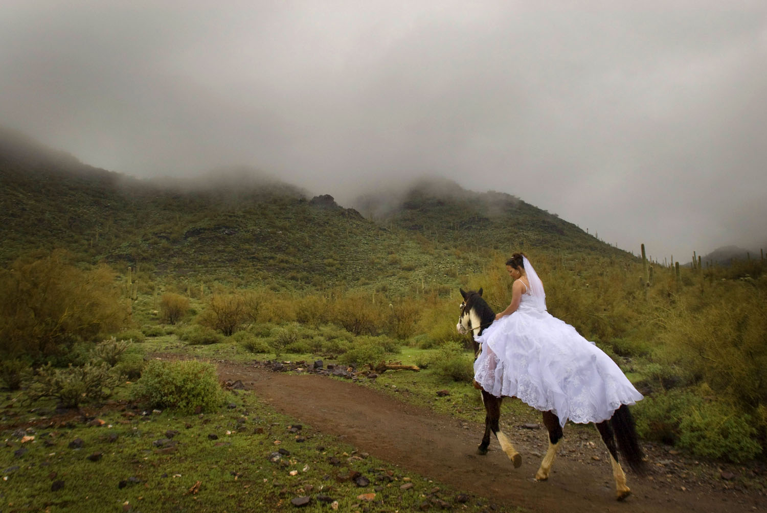 bride on her horse